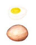 Ei und Hälfte des Eies Stockbilder