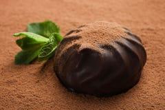 Eibische einer in der Schokolade und in der Minze stockbilder