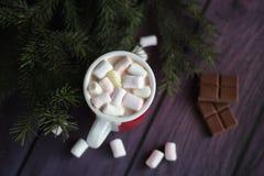 Eibische und eine Schale heiße Schokolade Stockbilder