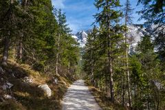 Eibsee lake path germany with the zugspitze mountain range in the background Stock Photos