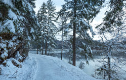 Eibsee lake winter view. Royalty Free Stock Photo