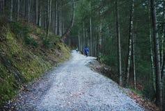 Eibsee sjö, Garmisch-Partenkirchen, bayerska fjällängar, Tyskland, 10 Arkivfoto