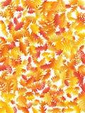 Eiche, Ahorn, wilde Ascheberesche verlässt Vektor, Herbstlaub auf weißem Hintergrund stockbilder