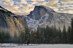 Eiche und Morgen bewölkt sich in Yosemite-Tal, Yosemite Nationalpark stockfotografie