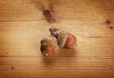Eicheln auf Holz Lizenzfreie Stockfotografie