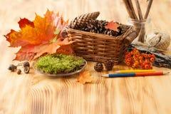 Eicheln, Kiefernkegel, Moos, Beeren der Eberesche, Steine für die Verzierung Lizenzfreie Stockfotos