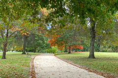 Eichen im Park, der zu Herbstorangenschatten macht Lizenzfreie Stockbilder