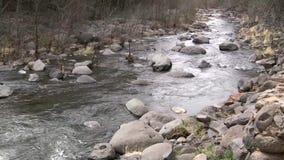 Eichen-Nebenfluss Arizona stock video footage