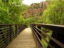 Eichen-Nebenfluss-Brücke Stockbild
