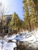 Eichen-Nebenfluss im Winter Stockbild