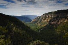 Eichen-Nebenfluss-Schlucht, Arizona Stockfotografie