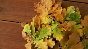 Eichenblätter in den Herbstfarben auf Holztisch stock video footage