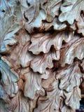 Eichenblätter geschnitzt von einem Holz Stockfotografie