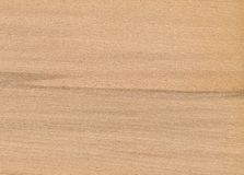 Eichenholzbeschaffenheit Stockfotografie