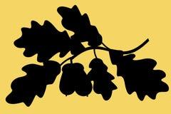 Eichenniederlassungs-Schattenbildillustration Stockfotos