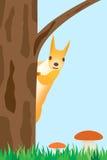 Eichhörnchen auf dem Baum. Lizenzfreie Stockbilder