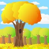 Eichhörnchen auf einem Baum im Herbstwald. Stockfotos