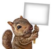 Eichhörnchen, das ein Zeichen hält Stockbild