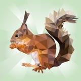 Eichhörnchen, das Nuss isst Auf Unschärfe Lizenzfreies Stockbild