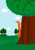 Eichhörnchen, das zum Baum klettert Lizenzfreie Stockfotografie