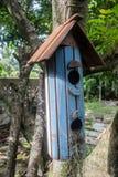 Eichhörnchen-Haus Stockfotografie