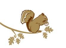 Eichhörnchen mit Golfball lizenzfreie abbildung