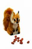 Eichhörnchen und Erdnüsse Lizenzfreie Stockfotografie