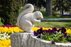 Eichhörnchen unter Tulpenbetten im Park lizenzfreies stockbild