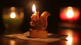 Eichhörnchenformkerze stock video