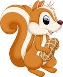 Eichhörnchenkarikatur mit Nuss Stockbilder