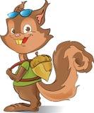 Eichhörnchenkursteilnehmer Lizenzfreies Stockfoto