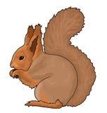 Eichhörnchentier Lizenzfreie Stockfotografie