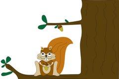 Eichhörnchen im Baum Stockbild