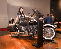 EICMA 2010 - Harley Davidson Royalty Free Stock Photography