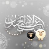 Eid Al在花卉ornamen的Adha文本阿拉伯伊斯兰教的书法  库存例证