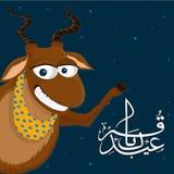 Eid-Al-Adha celebration with goat. Stock Image