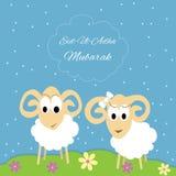 Eid-al-adha greeting card. Eid-al-adha Mubarak Muslim community festival of sacrifice greeting card with sheep. Vector Illustration Stock Photos