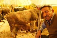 Eid al-Adha i Turkiet. Royaltyfri Bild