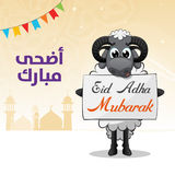 Eid Al Adha Sheep With Banner Royalty Free Stock Image