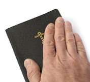 Eid auf Bibel Lizenzfreie Stockbilder