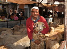 Eid sheep market Royalty Free Stock Photos
