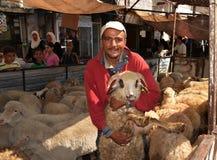 Eid sheep market. Eid: selecting sheep at market Royalty Free Stock Photos