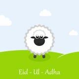 Eid-Ul-Adha greeting card with sheep. Muslim community festival of sacrifice Eid-Ul-Adha mubarak greeting card with sheep Royalty Free Stock Image