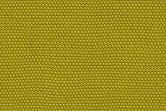 Eidechse-Haut-Auszug Lizenzfreie Stockbilder
