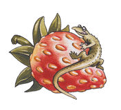 Eidechse und Erdbeere Lizenzfreie Stockbilder
