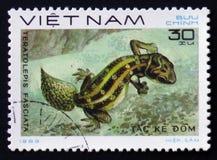 Eidechsenc$karotte-endstück Vipern-Gecko - Teratolepis-fasciata, Stempel ist von der Reihe, circa 1983 Lizenzfreie Stockbilder