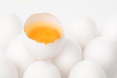 Eier lizenzfreies stockbild