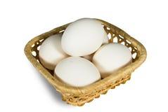 Eier lizenzfreies stockfoto