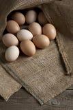Eier auf dem Rausschmiß Lizenzfreies Stockbild