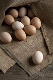 Eier auf dem Rausschmiß Stockfotografie